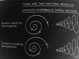 centripetence vs. centrifugence